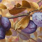plums by edisandu