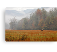 Majestic Realm    Canvas Print