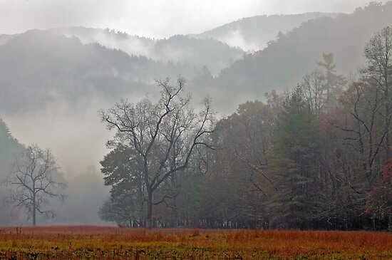 Cataloochee Dawn by Gary L   Suddath