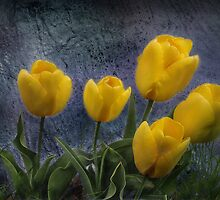 Lemon Yellow by Corinne Noon
