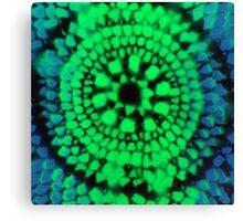 Scale Mandala 3 Canvas Print