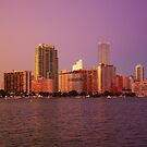Miami Florida, colourful sunset panorama of downtown business and residential buildings by Atanas Bozhikov NASKO