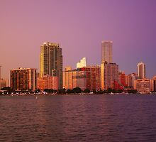Miami Florida, colourful sunset panorama of downtown business and residential buildings by Atanas Bozhikov NASKO