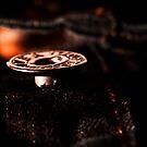 A Button #2 by Reza G Hassani