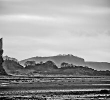 Greenan Castle and The Heads Of Ayr by derekbeattie