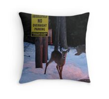 Absolutely No Overnight Parking Throw Pillow