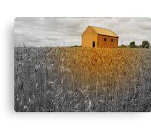 South Australia, Countryside-Farm Land Canvas Print