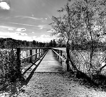 Autumn Pier - Black and White by Marcia Rubin