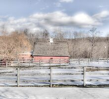 Country Barn Yard by Tom Piorkowski