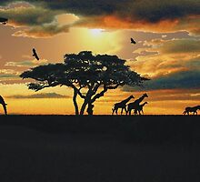 African Savanna At Sunset  by Ivan P. (John) Dobranic