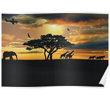 African Savanna At Sunset  Poster