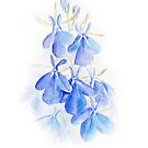 Lobelia blue wash watercolor art by Sarah Trett