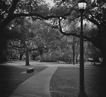A Walk In The Park by Michael Reimann