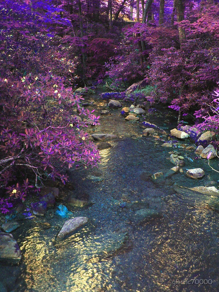 Different Aspect Brook by glennc70000