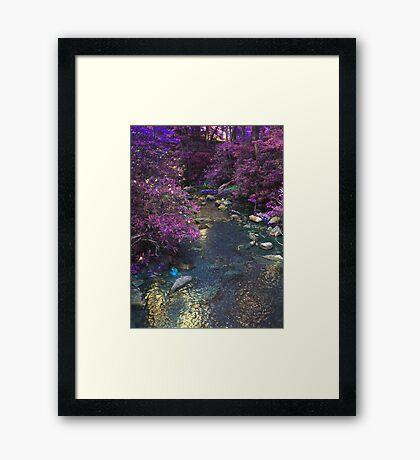 Different Aspect Brook Framed Print
