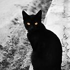 The black magic  by Shreedeep Rayamajhi