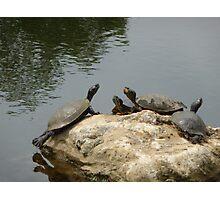 Teenage Mutant Ninja turtles,attack!!! Photographic Print