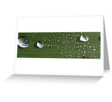 Droplet Race Greeting Card