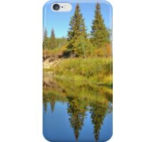 September iPhone Case/Skin