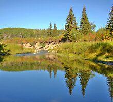 September by Jim Sauchyn