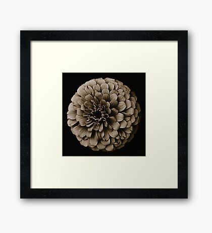 Life Is In The Details VIII [Print & iPad Case] Framed Print
