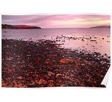 Coastal Twilight Poster