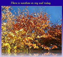 There is sunshine in my soul today by BlueMoonRose