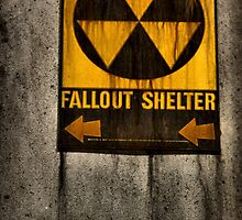 Fallout Shelter by JulieMaxwell