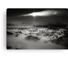 Winter Sun, Co Wicklow, Ireland. Canvas Print