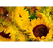 Sunshine For You Photographic Print
