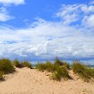Beach Grass on a Late Summers Day by Debbie  Maglothin