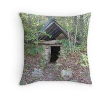 If these walls could talk Throw Pillow