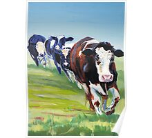 Morning Walk - Acrylic Painting of Four Cows walking Poster