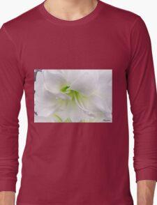 Ice Cool Baby Long Sleeve T-Shirt
