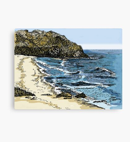 Big Sur, California Canvas Print