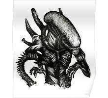 Xenomorph Poster
