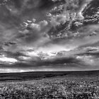 Prairie Storm - Saint Jo , Texas by jphall