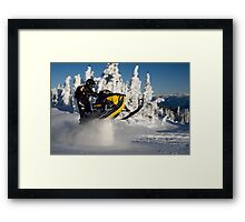 Yellow Bellied Snow Sucker Framed Print