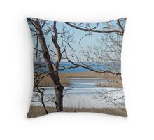 Woodneck Beach - Sippiwessitt, Cape Cod, MA Throw Pillow