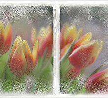 TulipWindow by RosiLorz