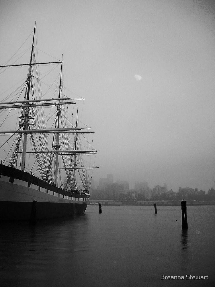 New York Harbor by Breanna Stewart
