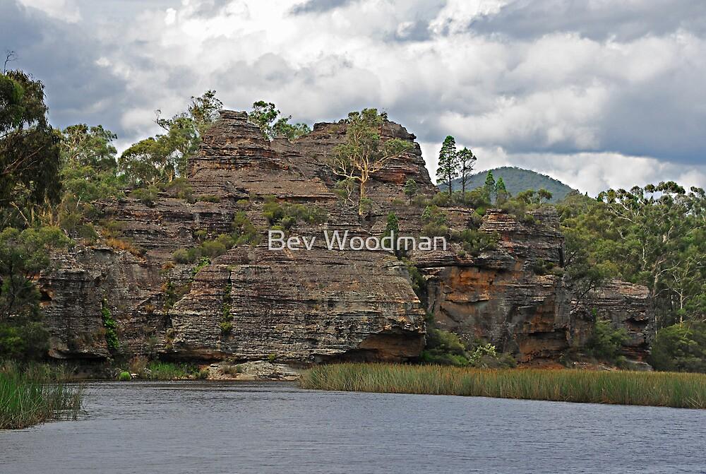 Dunn's Swamp - Wollemi National Park NSW Australia by Bev Woodman