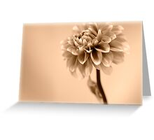 Dahlia tinted Greeting Card