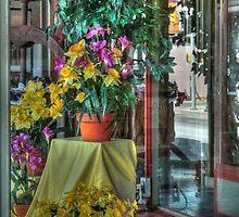 Spring Display by vigor