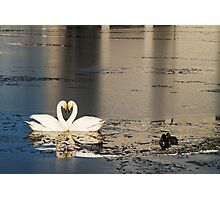 Love Reflected Photographic Print