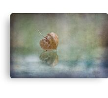 Just here and now Canvas Print