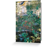 My first apple-tree. Greeting Card