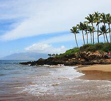 Makena Beach, Maui by Natalie  Markova