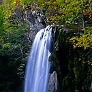 Falling Creek Falls in fall by Dave Parrish