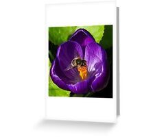 Gathering The Pollen Greeting Card